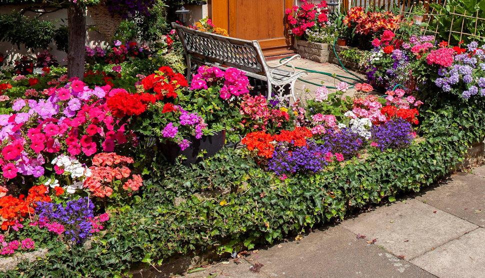 best front garden RIB