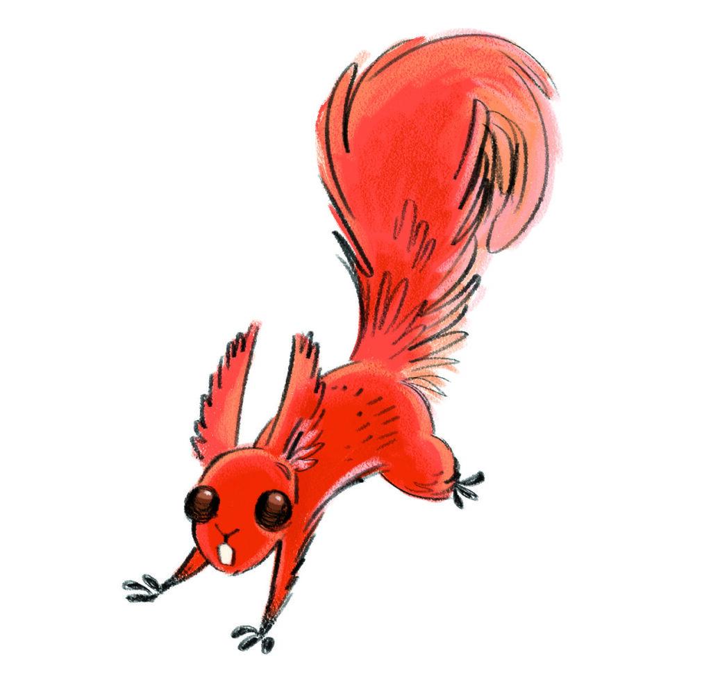 summer reading challenge character hazel the squirrel